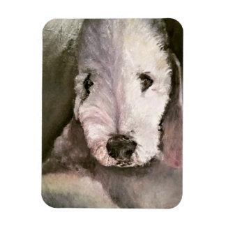 Sweet-Eyed Bedlington Terrier Photo Magnet