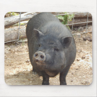 Sweet face, Black Mini Pig Mouse Pad