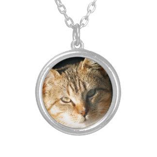 Sweet Feral Kitten With Loving Eyes Custom Jewelry