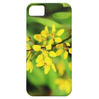 Sweet flower case