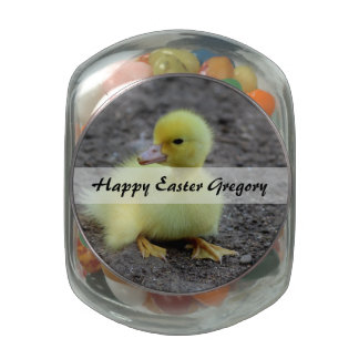 Sweet Fluffy Duckling Yellow Glass Candy Jars