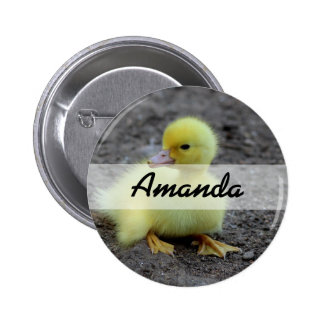 Sweet Fluffy Duckling Yellow Pinback Button