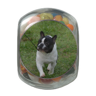 Sweet French Bulldog Jelly Belly Candy Jars