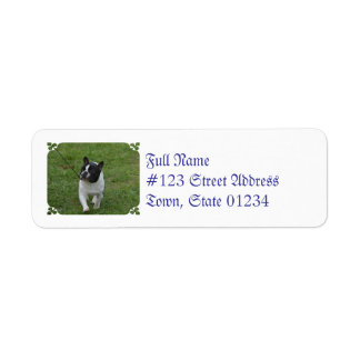 Sweet French Bulldog Labels