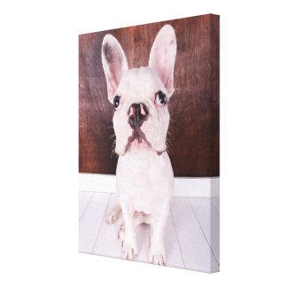 Sweet French Bulldog Puppy Canvas Print