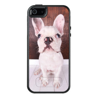Sweet French Bulldog Puppy OtterBox iPhone 5/5s/SE Case