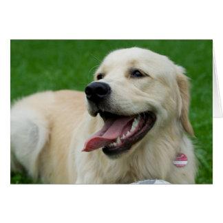 Sweet Friendly Labrador Card