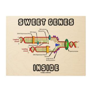 Sweet Genes Inside DNA Replication Humor Wood Wall Decor
