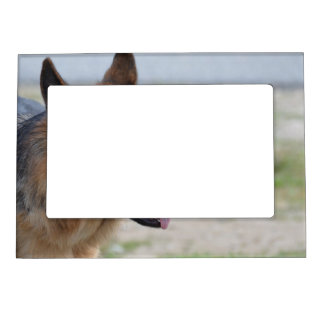 Sweet German Shepherd Dog Magnetic Frame