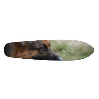 Sweet German Shepherd Dog Skateboard