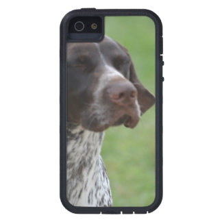 Sweet German Shorthaired Pointer iPhone 5/5S Covers