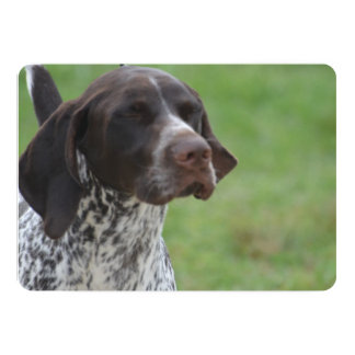 Sweet German Shorthaired Pointer 5x7 Paper Invitation Card