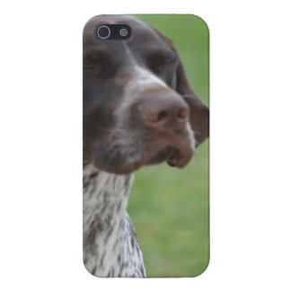 Sweet German Shorthaired Pointer Covers For iPhone 5
