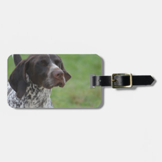 Sweet German Shorthaired Pointer Luggage Tags