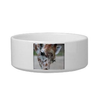 Sweet Giraffe Pet Bowl