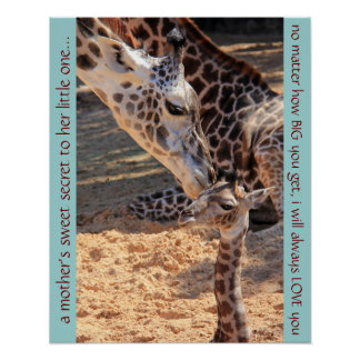 Sweet giraffes; a mother's secret to her baby poster