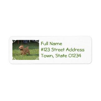 Sweet Glen of Imaal Terrier Custom Return Address Labels