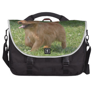 Sweet Glen of Imaal Terrier Bags For Laptop