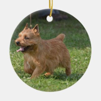 Sweet Glen of Imaal Terrier Double-Sided Ceramic Round Christmas Ornament