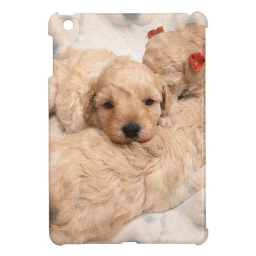 Sweet Golden Retriever iPad Mini Covers