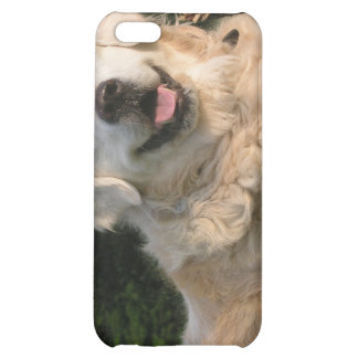 Sweet Golden Retriever iPhone 4 Case