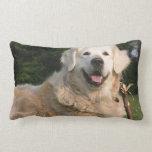 Sweet Golden Retriever Pillow