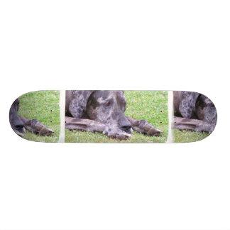 Sweet Great Dane Skateboard