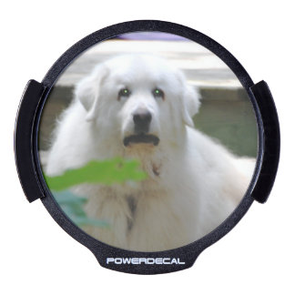 Sweet Great Pyrenees LED Car Window Decal