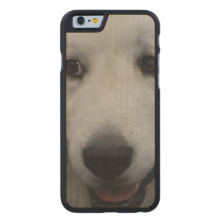 Sweet Great Pyrenees Carved® Maple iPhone 6 Slim Case