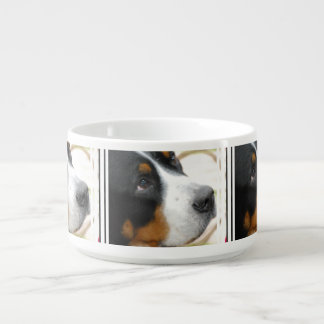 Sweet Greater Swiss Mountain Dog Bowl