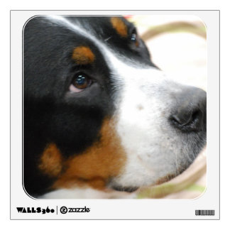 Sweet Greater Swiss Mountain Dog Wall Graphics