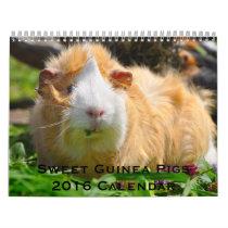 Sweet Guinea Pigs 2016 Calendar