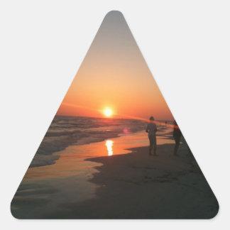 Sweet Home Siesta Triangle Sticker