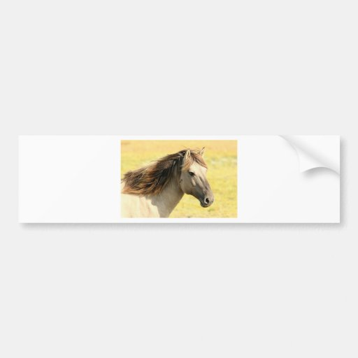 Sweet Horse Bumper Stickers