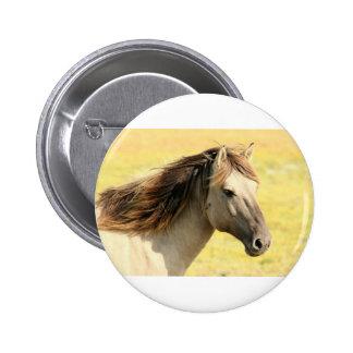 Sweet Horse Pinback Buttons
