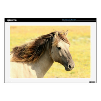 Sweet Horse Laptop Decals