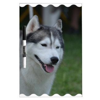 Sweet Husky Dry Erase White Board