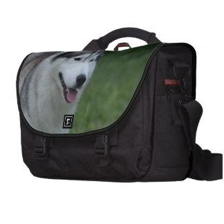 Sweet Husky Laptop Messenger Bag