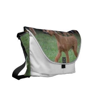 Sweet Irish Terrier Courier Bags