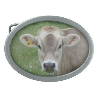 Sweet Jersey Cow Belt Buckle