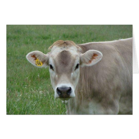 sweet jersey cow card