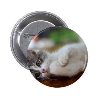 Sweet Kitten 2 Inch Round Button