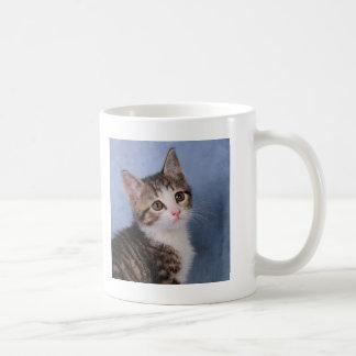 Sweet Kitten Coffee Mug
