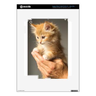 Sweet Kitten in good Hand iPad 3 Decal