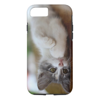 Sweet Kitten iPhone 7 Case