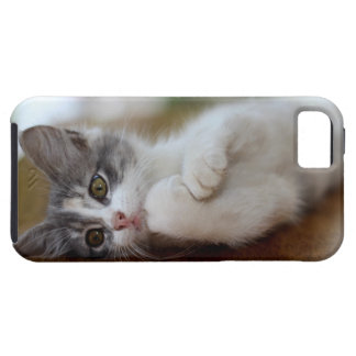 Sweet Kitten iPhone SE/5/5s Case