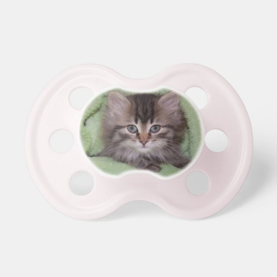Sweet Kitten Pacifier