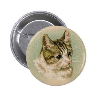 Sweet Kitten Pinback Button