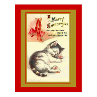 Sweet Kitten Vintage Christmas Cards Post Card