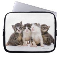 Sweet Kittens Laptop Sleeve